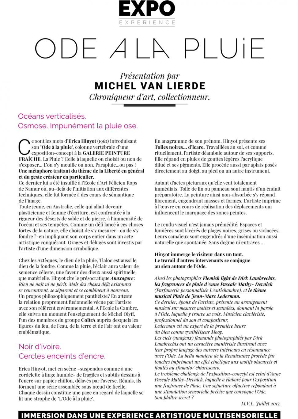 Text Michel Van Lierde collector art columnist exhibition Erica Hinyot - Freedom artistic act Cambre Cobra - Anaxagore